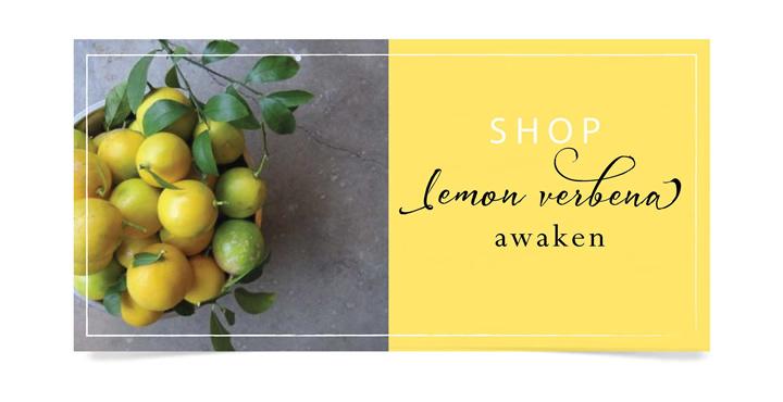 lemonverbenafragrance2.jpg